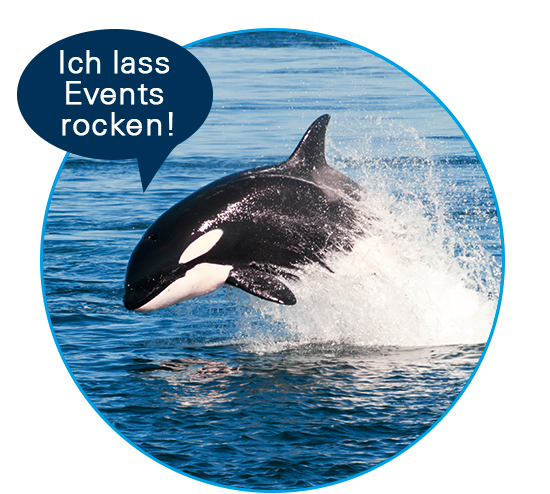ORCA Jobs - Event Koordination & Marketing